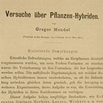Text from Gregor Mendel�s 1866 publication, �Experiments in Plant Hybridization�
