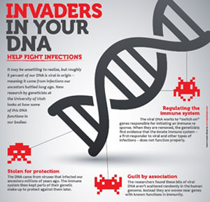 Invaders in your DNA infographic