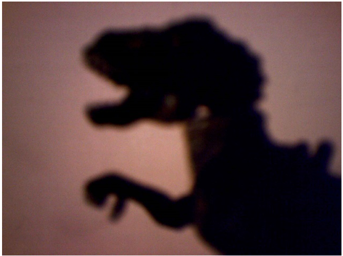 Dinosaur shadow