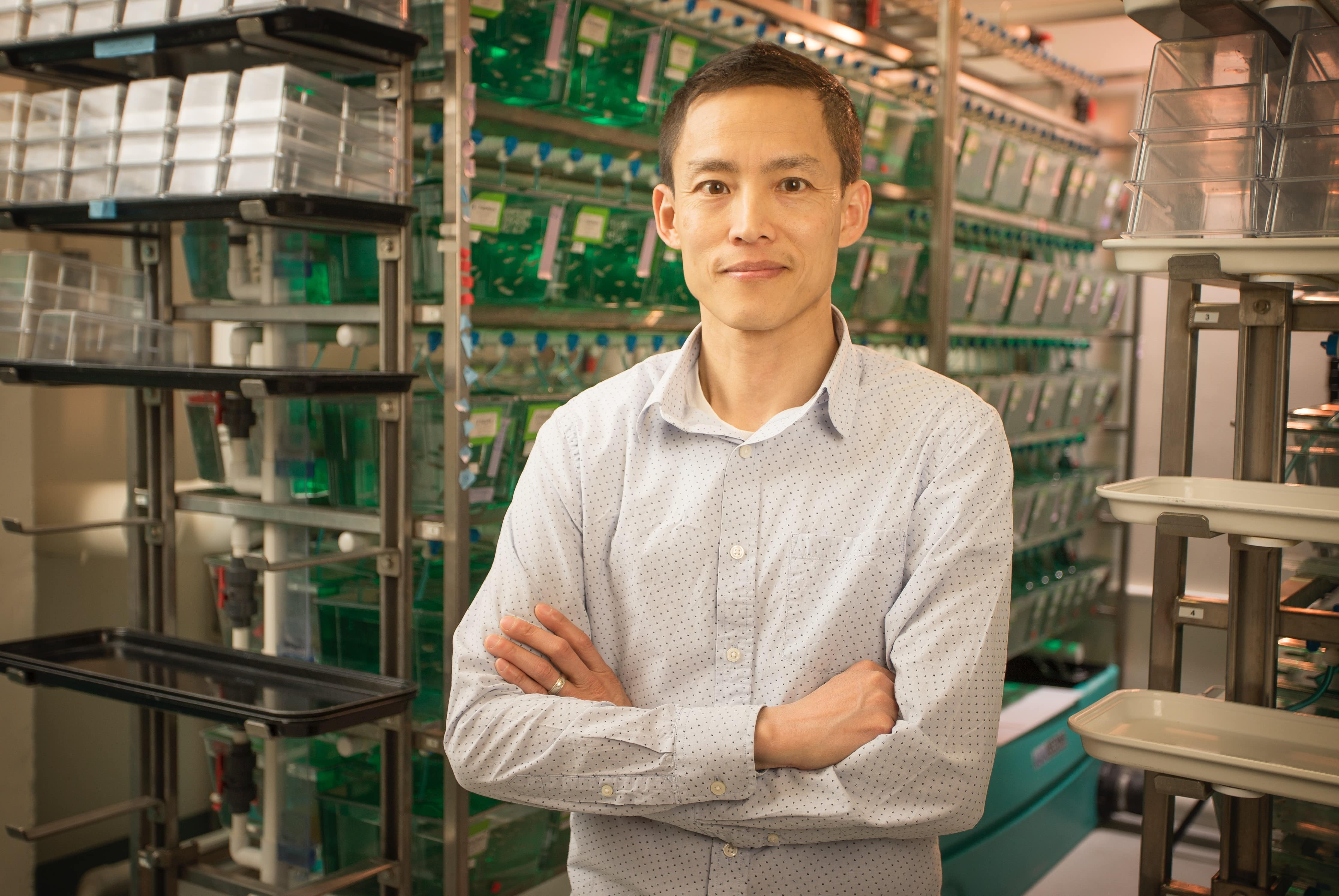 "Viravuth (""Voot"") Yin, standing with arms crossed and smiling in front of a shelves holding tanks of zebrafish in his lab."