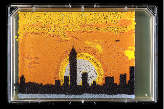 Yeast colonies on a large plate arranged to look like the New York City skyline: shades of yellow and orange for the sky, white and gray for the moon and ground, and black for the building silhouettes.