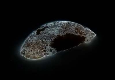 A glowing, oval-shaped piece of white phosphorus flecked with black.