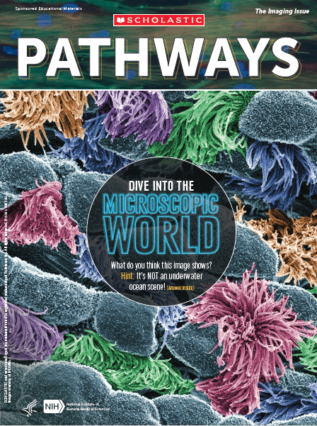 Cover of Pathways student magazine showing geometric shapes, pom-pom-like structures, and text that reads, Dive into the microscopic world. What do you think this image shows? Hint: It's NOT an underwater scene! (Answer inside).