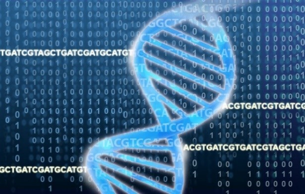An illustration of a DNA molecule on a background of genetic code and binary code.