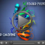 Screenshot of the video showing how chlorine affects a bacterial protein.