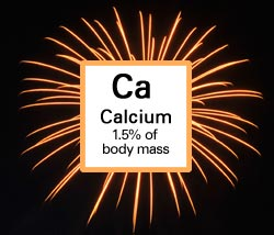 Calcium. 1.5% of body mass.