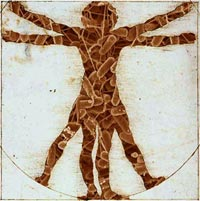 Vitruvian man filled with bacteria.
