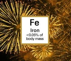 Iron. <0.05% of body mass.