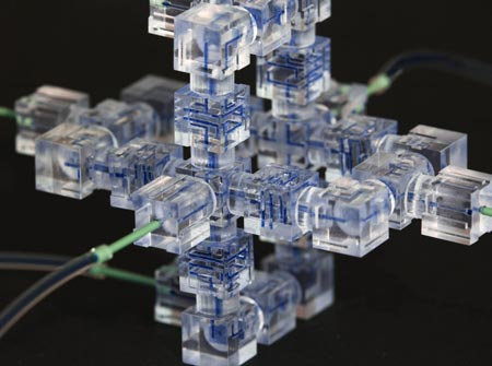 Modular microfluidics system. Credit: University of Southern California Viterbi School of Engineering.